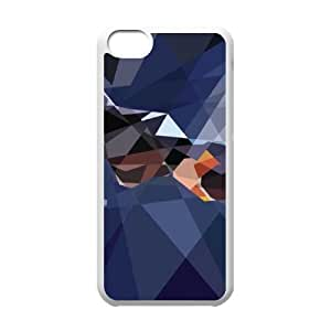 Generic Case Catwoman Dc Universe For iPhone 5C Q2A2988649