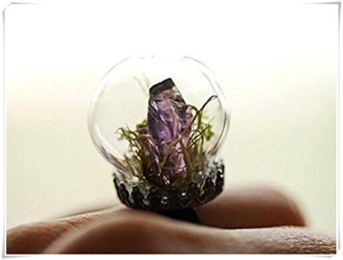 Anneau de cristal améthyste, Terrarium Bijoux, mousse, Terrarium,
