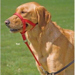 NPRED05 Halti Red Size 05 Dog Training HeadCollar