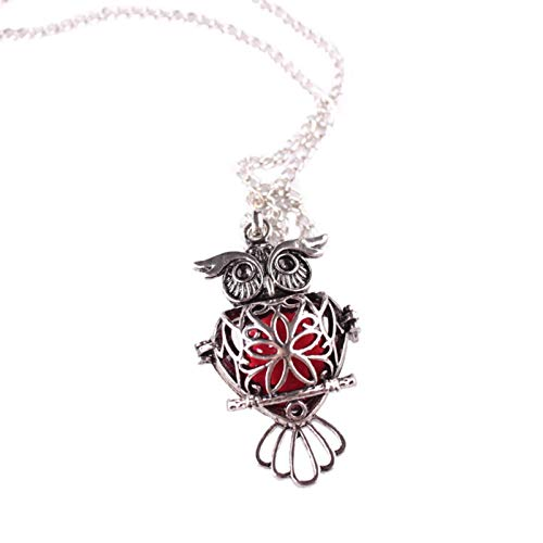 Housweety Aromatherapy Essential Oil Diffuser Necklace Owl Locket