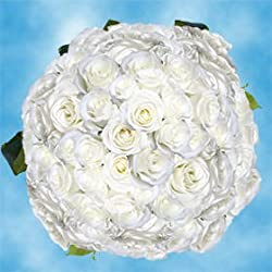 200 Fresh Cut White Roses for Valentine's Day | Tibet Roses | Fresh Flowers Express Delivery | The Perfect Valentine's Day Gift