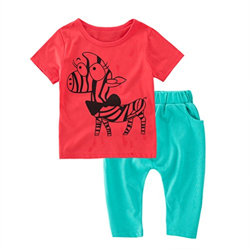 May's Babypajama Zebra Little Boys Short Sleepwear Cotton Sets T-Shirt & Pants (18-24 Months) (Zebra Boyshort)