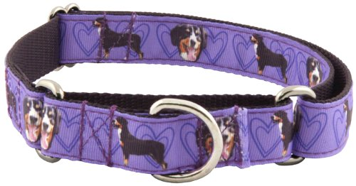 Country Brook Design Purple Entlebucher Mountain Ribbon Martingale Collar - XL