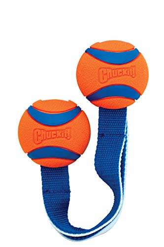 (Chuckit! Medium Ultra Duo Tug)