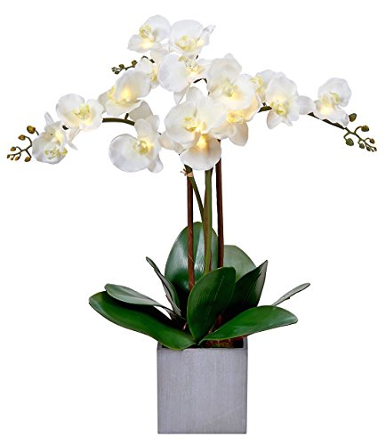 Lit Triple Stem Phalaenopsis Silk Orchid Arrangement-Battery Operated Lighted Artificial Orchid Plant(White) (Orchid Plant In Pot)