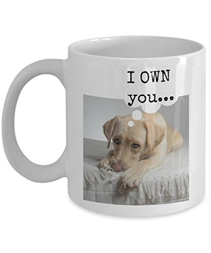 Yellow Labrador Costume (funny yellow Labrador Retriever gift mug -- I OWN you... - 11 oz. ceramic coffee mug perfect for yellow lab lovers and owners)