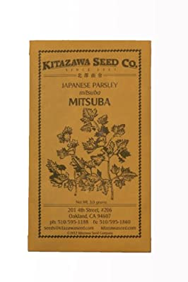 Japanese Parsley - Mitsuba