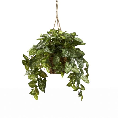 Nearly Natural 6738 Nepthytis Hanging Basket Green