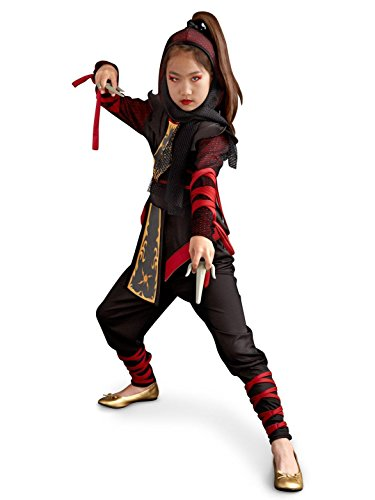 Rubie's Costume Co Warrior Ninja Costume, Medium -