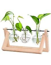 HUABEI Plant Terrarium Wooden Stand, Air Planter Bulb Glass Vase Metal Swivel Holder Retro Tabletop Hydroponics Home Garden Office Decoration - 3 Bulb Vase