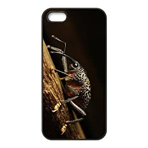 The Snout Beetle Hight Quality Plastic Case for Iphone 5s