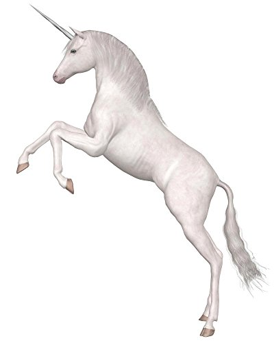 Rearing Magical Unicorn Wall Decal by Wallmonkeys Peel and Stick Animal Graphics WM410031