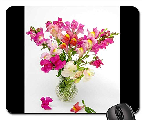 Mouse Pad - Antirrhinum Snapdragon Flower Nature Natural Green