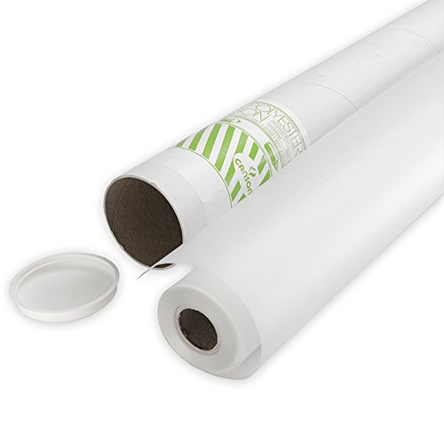 Canson 1.10 x 20 m 75 µ Translucent Mat Coated Polyester Film Roll by Canson (Image #3)
