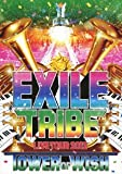 EXILE TRIBE LIVE TOUR 2012 ~TOWER OF WISH~ (3枚組DVD)