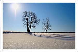 "Planet Scene Poster - Winter Scenery 16 Tin Sign (8""x12"")"