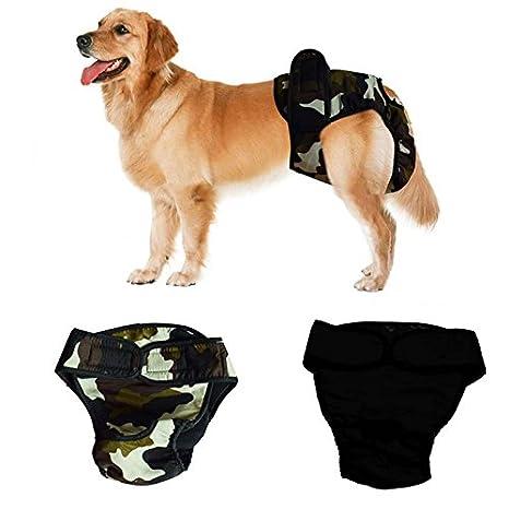 2 Pcs Pantalon pour Chien Lavable Reutilizables Pantalon Sanitario Pañales Perro Período Menstrual Para perro Hembra Negro + Camuflaje Verde M: Amazon.es: ...
