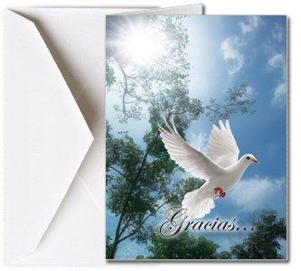 Amazon.com : Tarjetas Funerales de Agradecimiento, Tarjetas de Gratitud, Tarjetas de Gracias (25 Cantidad) FTKC1016ES Dove (En Blanco - Impreso por usted) ...