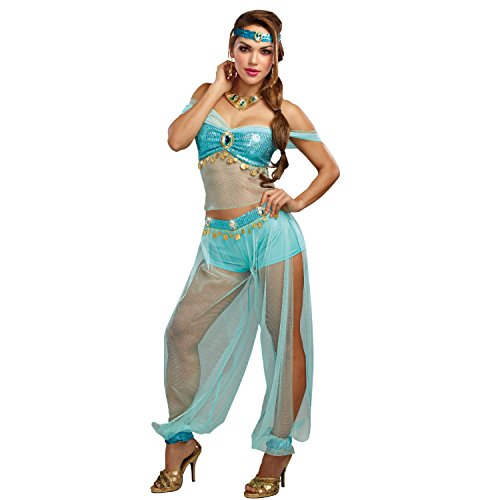 Dreamgirl Women's Harem Princess, Turquoise, (Harem Princess Costume)