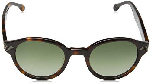618e44ba797222 Lozza, Lunettes de Soleil Femme Green (Shiny Brown Havana) ...