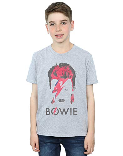 David Bowie Boys Aladdin Sane Distressed T-Shirt, 5 to 13 years