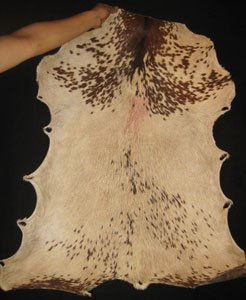 Ivory Coast Whole Hide Goat Skin - with Hair
