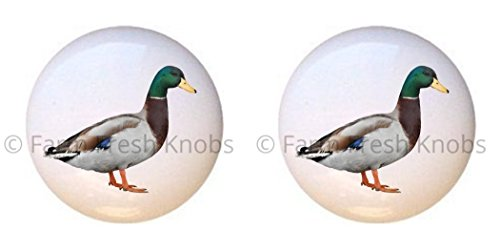 SET OF 2 KNOBS - Mallard Duck - Ducks - DECORATIVE Glossy CERAMIC Cupboard Cabinet PULLS Dresser Drawer KNOBS