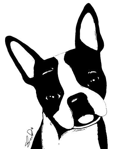 Pet Studio Art Boston Terrier Art Print 8in x 10in