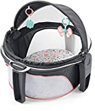 Fisher-Price On-The-Go Baby Dome - Pink Pacific
