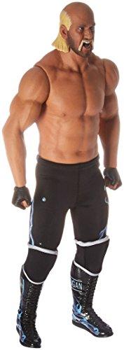 Hulk Hogan Hollywood Hogan 1:6 Scale Action ()