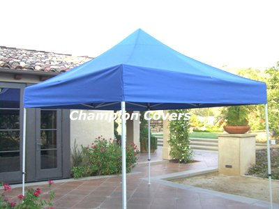 Image Unavailable. Image not available for. Color Ch&ion Replacement Top for Ez Up 10x10 Blue  sc 1 st  Amazon.com & Amazon.com: Champion Replacement Top for Ez Up 10x10 Blue: Garden ...