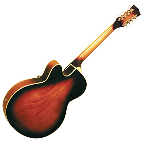 Gold Tone Mandocello by Gold Tone (Image #2)