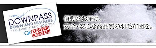 【DOWNPASS認証】フランス産ホワイトダックダウンエクセルゴールドラベル羽毛掛布団 キング サイ B076CMQJKP