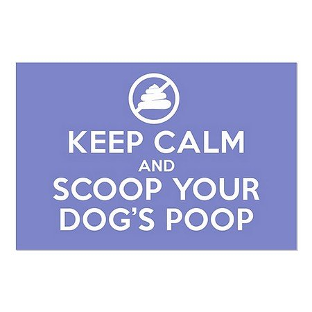 CGSignLab | ''Keep Calm -Scoop -Blue'' Repositionable Opaque White 1st Surface Static-Cling Non-Adhesive Window Decal (5-Pack) | 27''x18'' by CGSignLab