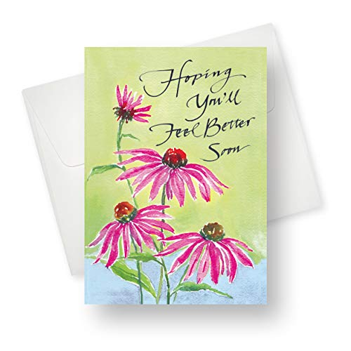 (12 Pack) Echinacea Get Well Soon Greeting Card - Premium Quality with Unique Designs - for Boys, Girls, Men, Women and Adults - 5.5