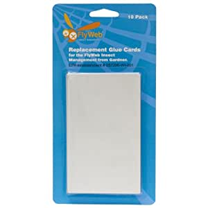 Fly Web Glue Board 10 Pack