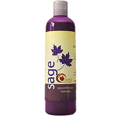 Maple Holistics Sage Anti Dandruff Shampoo