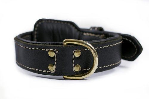 """Dean and Tyler """"ITALIAN TAILOR"""", Dog Collar with Black Padding and Brass Hardware – Black – Size 36-Inch by 1-3/4-Inch – Fits Neck 34-Inch to 38-Inch"""
