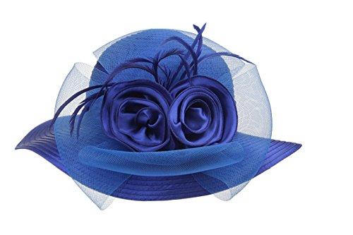 Dantiya Women's Organza Wide Brim Floral Ribbon Kentucky Derby Church Dress Sun Hat (Free, 2 Style-Blue) (Derby Womens Fashion)
