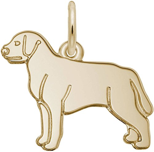 Dog Charm Retriever Plated Gold (Rembrandt Flat Labrador Retriever Dog Charm - Metal - Gold Plated Sterling Silver)