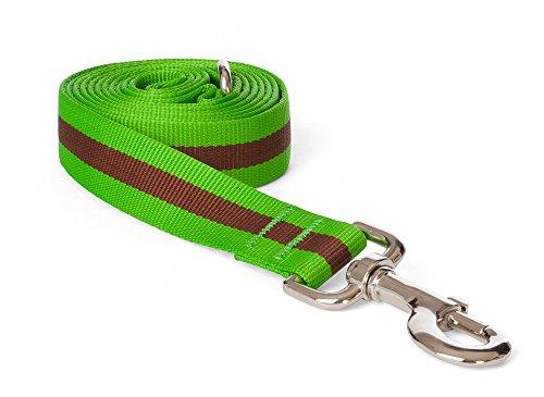 fabdog Classic Stripe Dog Lead, Eco-Friendly Dog Leash (Green, Large)