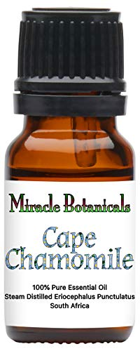 Miracle Botanicals Wildcrafted Cape Chamomile Essential Oil - Indigenous South African 100% Pure Eriocephalus Punctulatus - 10ml (Indigenous South African Plants Used For Medicine)