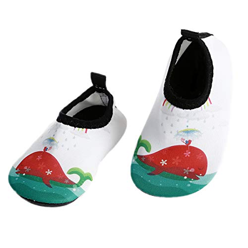 L-RUN Infant Swim Shoes Barefoot Skin Aqua Shoes White US 18-24 Months=EU - Sport Performance Slip