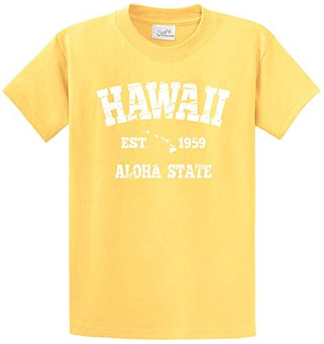 Vintage Hawaiian Islands Tees in 42 Colors and Regular, Big and Tall Sizes