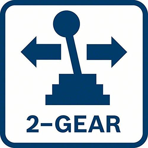 2-Gang Logo