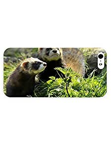 3d Full Wrap Case for iPhone 5/5s Animal Ferrets In The Grass