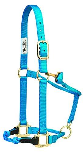 Web Halter (HYBRIDHalter Adjustable Horse Halters, Hurricane Blue, Medium)