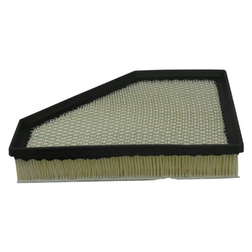 Ecogard XA6131 Air Filter