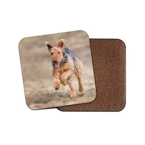 Airedale Terrier Coaster - Dog Puppy Yorkshire Cute Pet Breeder Fun Gift #12469