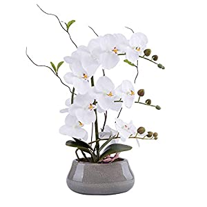 LIVILAN Large Artificial Flower Arrangement Lifelike Silk Orchid Artificial Flower with Decorative Ceramic Grey Vase Vivid Potted Orchid Plant White